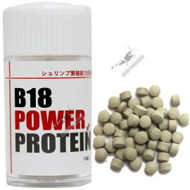 Lowkeys B18 Power Protein