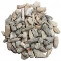 Grenailles de Corail 10-15 mm au kilo
