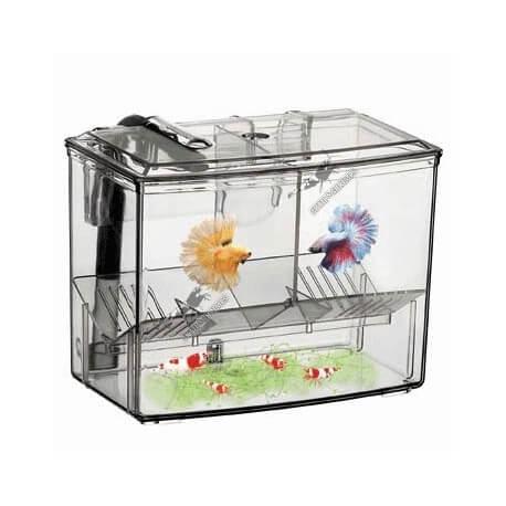 Breeding Box  Externe 1.25L