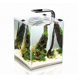 Shrimp Set Smart 30L Black