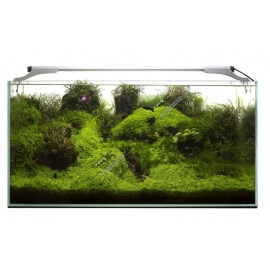 Aquael Leddy Slim 36w Plant - 100-120cm