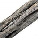 Holey-Wood 20 cm