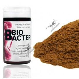 Qualdrop - BioBacter 30g