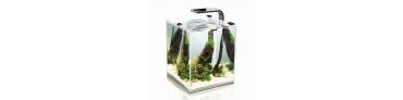 Autres Aquariums